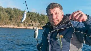РЫБАЛКА И ПОДВОДНАЯ ОХОТА В ФИНЛЯНДИИ Аландские острава Wild Fishing Finland ДИАЛОГИ О РЫБАЛКЕ