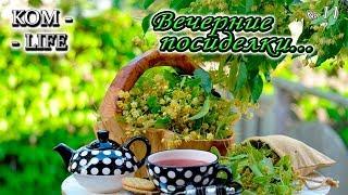 видео: #11 ВЕЧЕРНИЙ СТРИМ С ГОСТЕМ