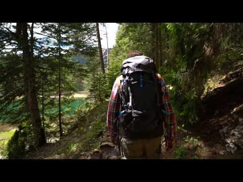 TravelBlogPortal Forest Walk