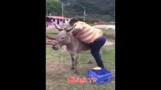 Funny Unbeliveable Clips recorded june 2018