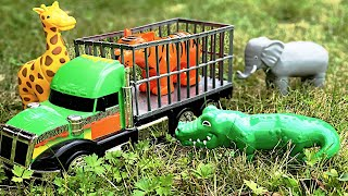 Zoo Animal Toys 🐯 Ride in Bouncy Transport Truck