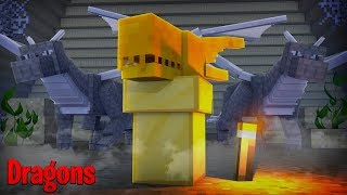 IS THE NEW DRAGON BABY COMING SOON? - Minecraft Dragons