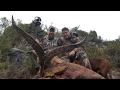 WILD Jaeger Spanish Ibex Hunt, Season 1 (Ricky Mills)