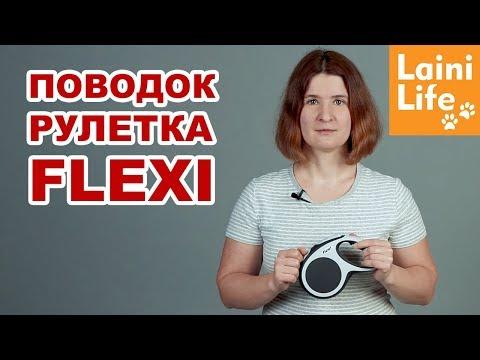 Поводок рулетка FLEXI - родственник бензопилы | Как подобрать размер и правила использования