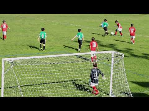 Sporting FC Vs Benfica - U9 Soccer