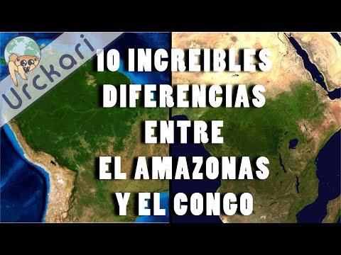 10 Increíbles Diferencias entre Las selvas del Amazonas y el Congo