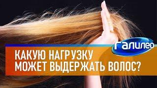 Галилео | Человеческий волос 💁 [Human hair]