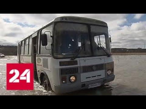 Ешь Российское - Русская ягода - YouTube