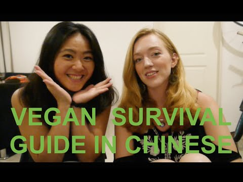 Vegan survival phrases in Chinese