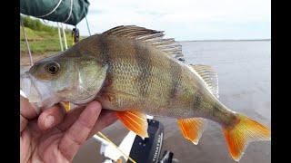 Рыбалка на реке 22 августа