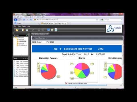 AgileApps' AgileBI Sales Module Demo