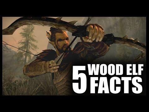 Skyrim - 5 Wood Elf Facts - Elder Scrolls Lore