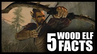 Skyrim - 5 Wood Elf Facts - Elder Scrolls Lore