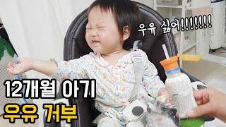 12개월 아기 분유, 우유 거부❗❗ 물만 먹을래요~