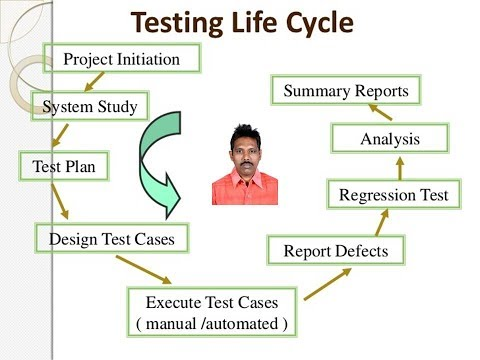 2.3 Test Execution in System Testing