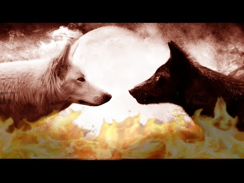 Добро и зло волков картинки