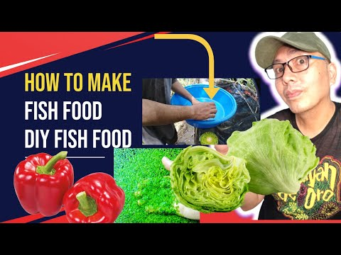 How to make your own DIY fish food
