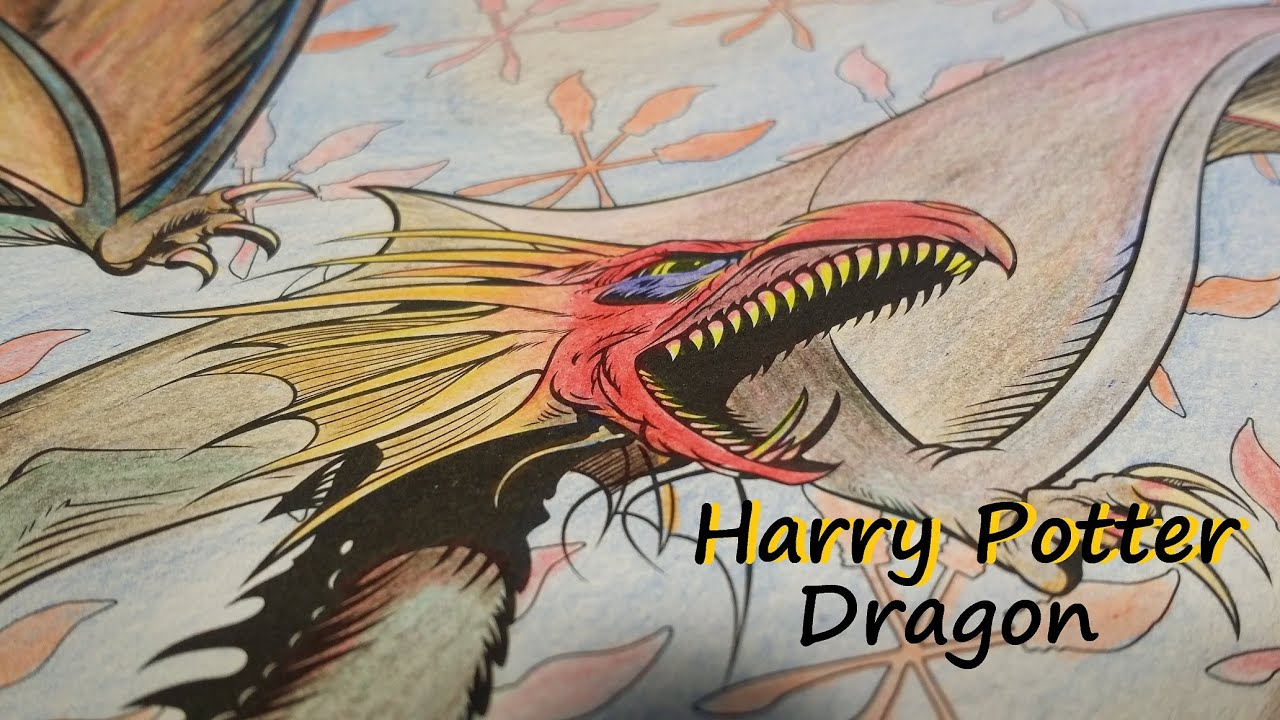 Harry Potter Coloring Book Dragon