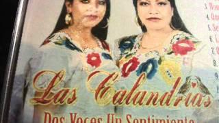 LAS CALANDRIAS -PERRO QUE LADRA NO MUERDE