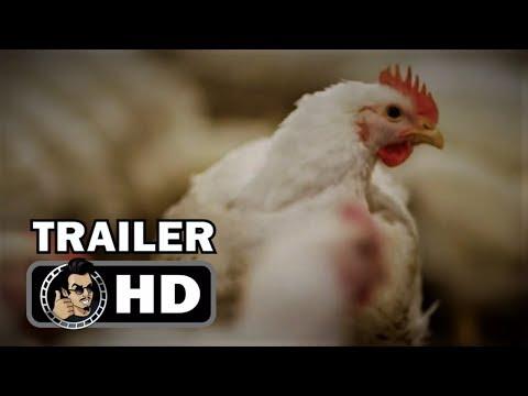 ROTTEN   HD Netflix FoodTrue Crime Documentary Series Series