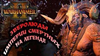 Total War Warhammer 2   Зверолюды   Начало большой кампании