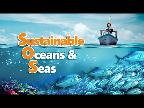 Sustainable Oceans & Seas - Full Video