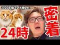 【ヒカキン密着24時 2020年コロナ禍Ver.】YouTuberの裏側〜お仕事編〜【まるお&もふこも密着】
