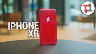 Ad iPhone XR MANCA UNA COSA FONDAMENTALE | Recensione | ITA da TuttoTech