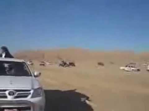 Sinai, Egypt Travel Video