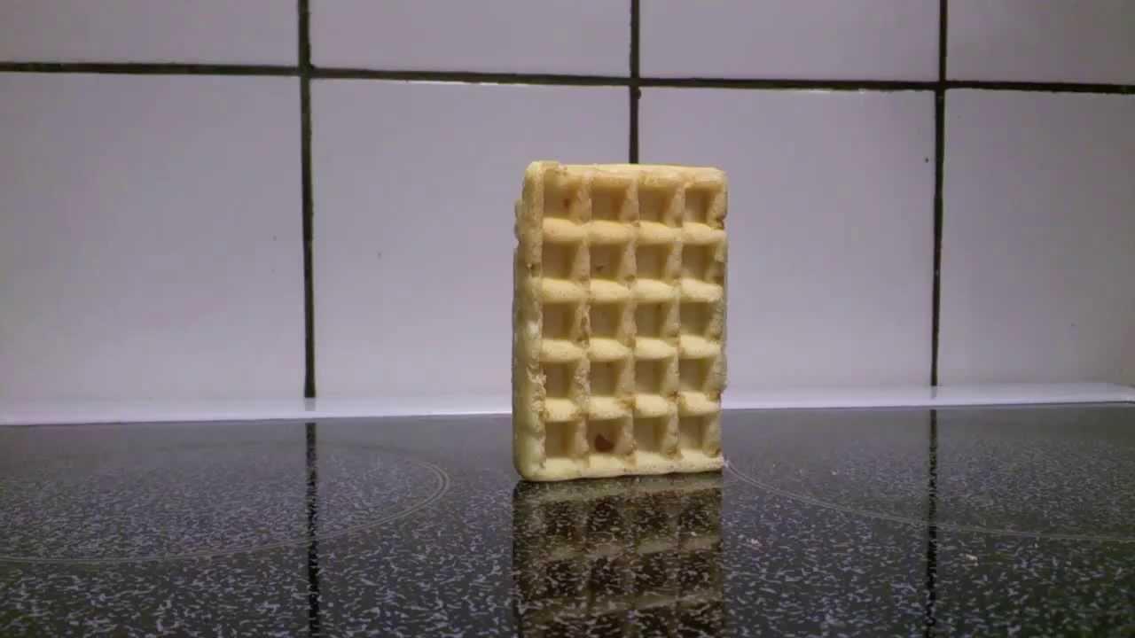 waffle falling over   youtube