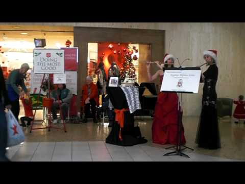 Lauren Erickson Flute at Briarwood Mall