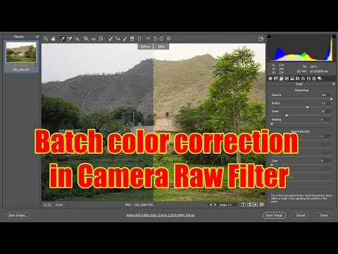 Batch Color Correction In Camera Raw Filter In Photoshop | The Imaging