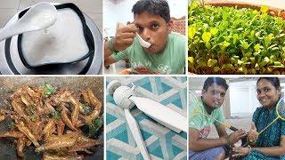 Vlog/Elaneer Payasam(Fireless)/Grow Methi at Home/Karuvadu Varuval