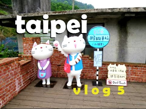 台北 | TAIPEI VLOG: KITTIES EVERYWHERE !!