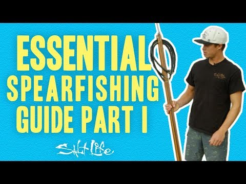 Essential Spearfishing Guide | Salt Life