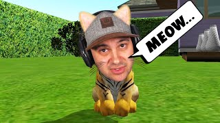 Cat Simulator (meow)