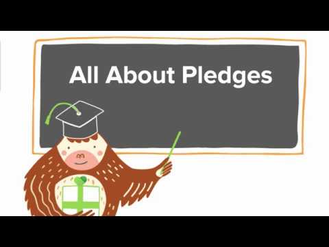 Bloomerang Intermediate Class: All About Pledges