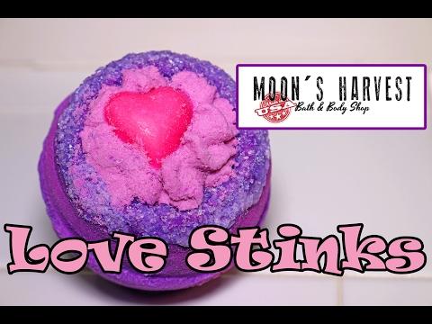 love stinks 1999 watch online videos hd vidimovie