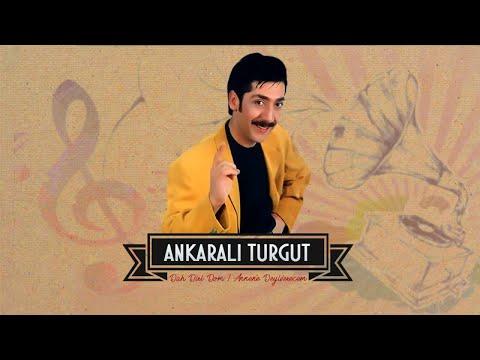 Ankaralı Turgut - Roman