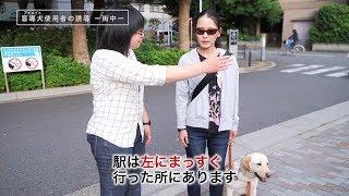 アイメイト(盲導犬)使用者の誘導―街中―