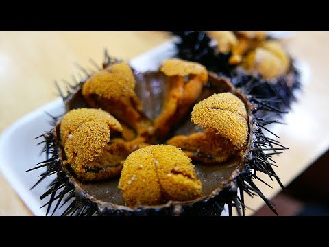 Japanese Street Food - GIANT SEA URCHIN Uni Sashimi Japan Seafood