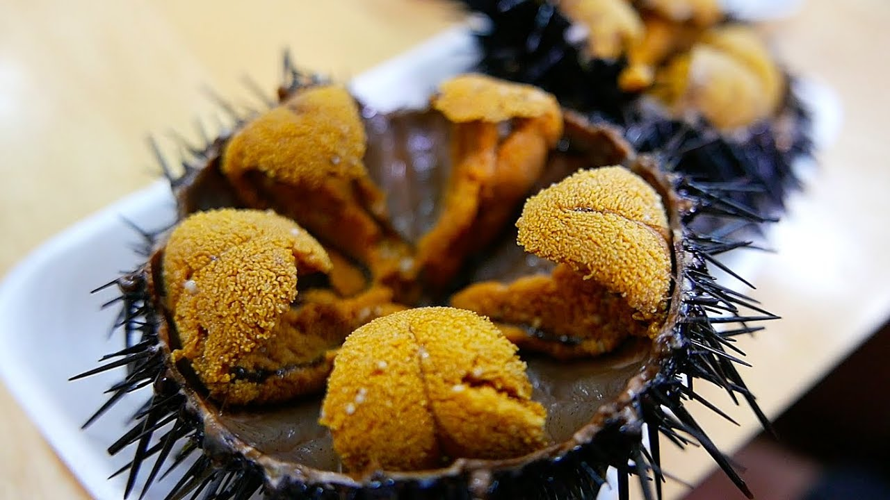 Japanese Street Food Giant Sea Urchin Uni Sashimi Japan Seafood