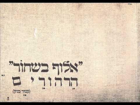 עמיר בניון ברוך השם שאי אפשר Amir Benayoun