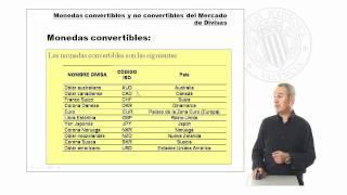 Monedas Convertibles y No Convertibles del Mercado de Divisas |  | UPV