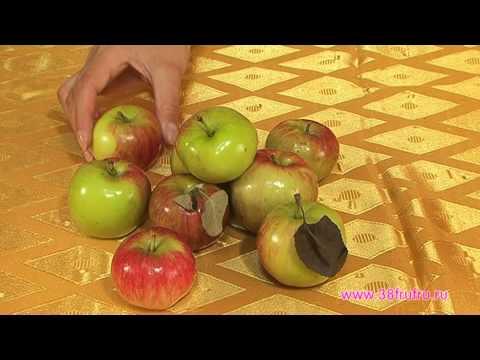 Мастерок. Корзина из фруктов. 38frufru.ru