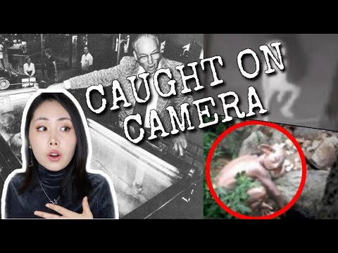 Mysterious Creatures Caught On Camera  *PROOF*