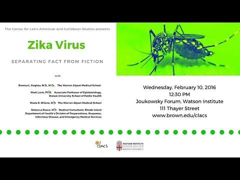 Zika Virus: Separating Fact from Fiction