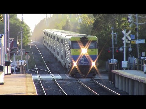 LIRR: A Golden Friday Rush Hour in Greenlawn