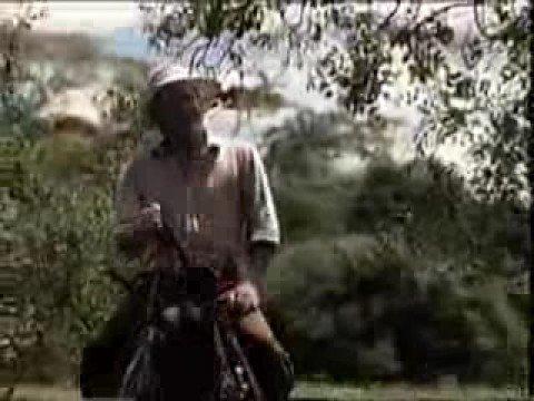 Chamada de reestreia de Pantanal