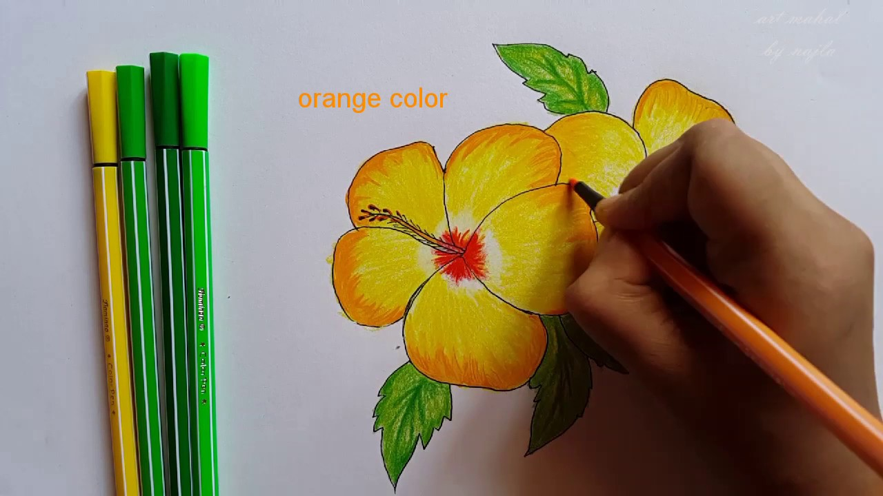 Flower How To Draw Yellow Hibiscus Easy Drawing Step By Step